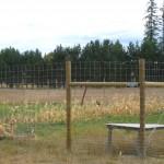 Community Garden's Deer Fence