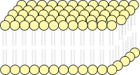 Lipid Bilayer of Cell Membrane