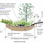Vegetated Swale